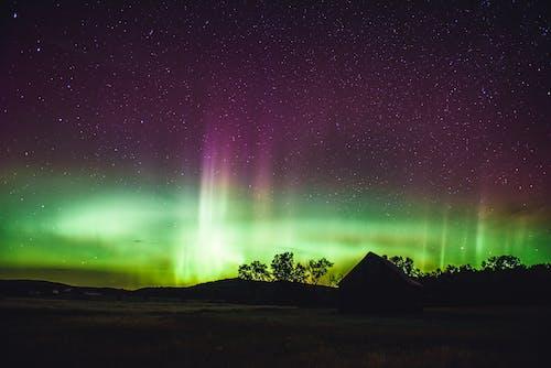 Foto stok gratis angkasa, artis, aurora borealis, bayangan