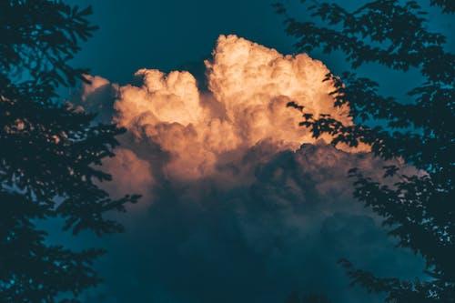剪影, 和平的, 多雲的, 天性 的 免费素材照片