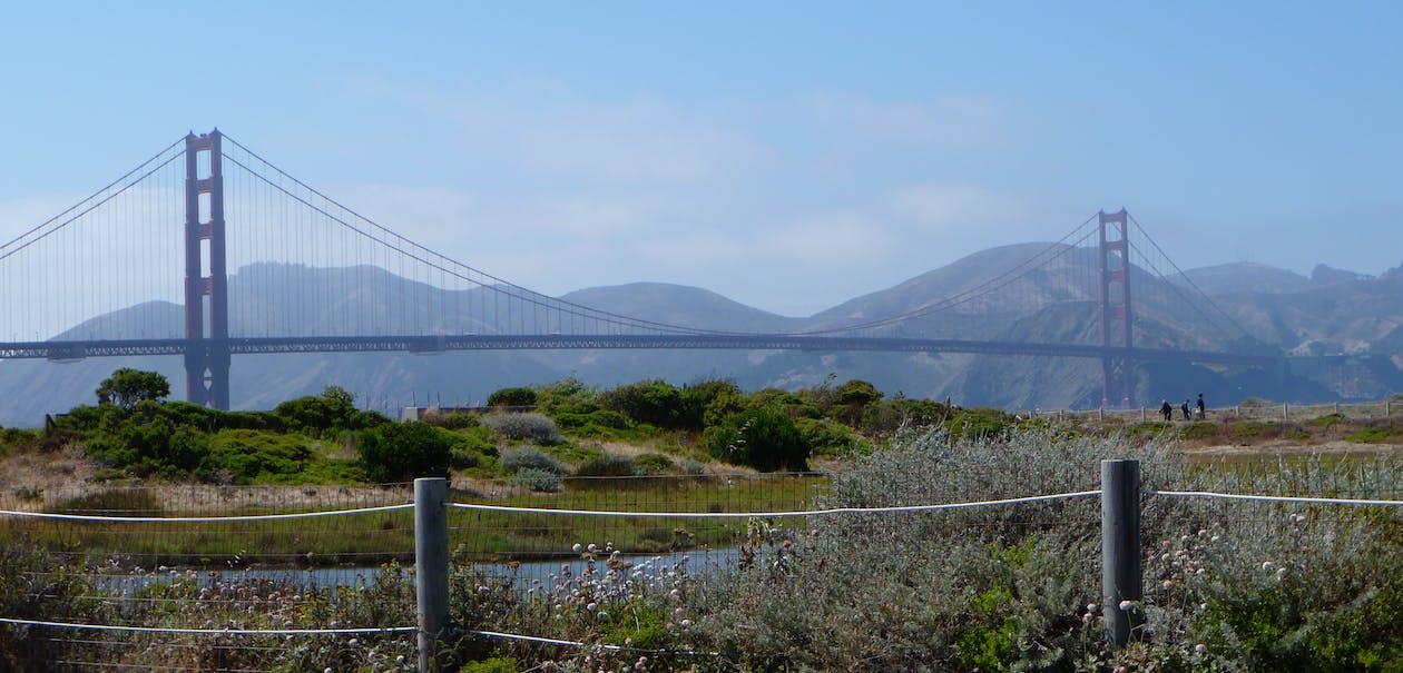 Free stock photo of architecture, bay, bay bridge