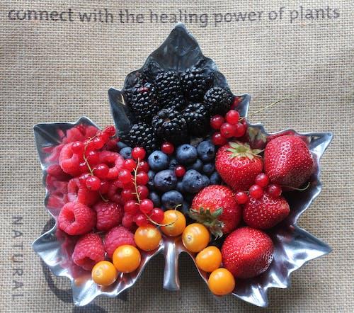 Free stock photo of berries, blackberries, blueberries