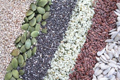 Free stock photo of chia, chia seeds, food art