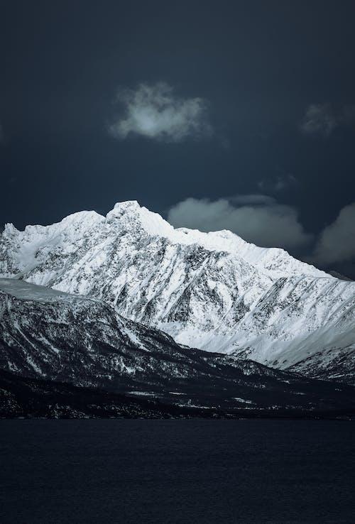 下雪的, 下雪的天氣, 冬天的背景, 冬季 的 免费素材照片