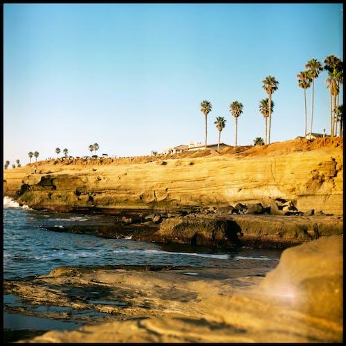 Immagine gratuita di acqua, alba, costa, deserto