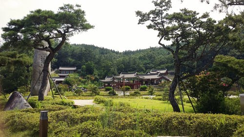 Free stock photo of architecture, korea, park, school