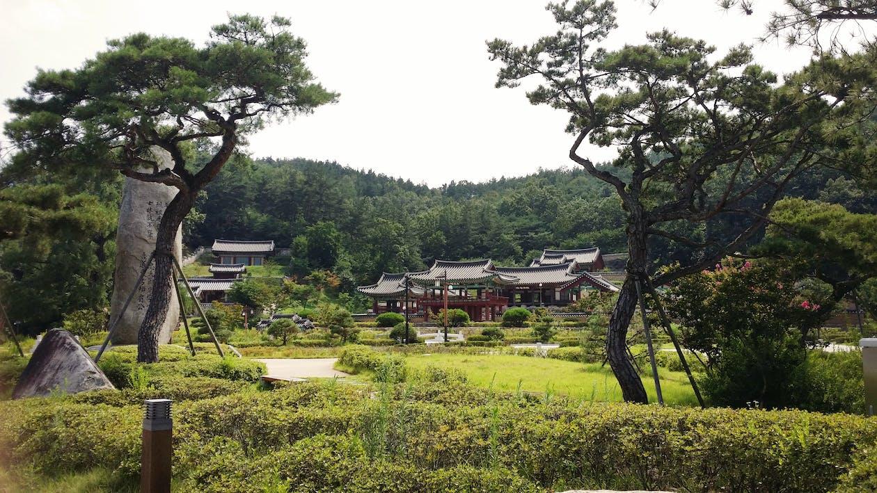 Free stock photo of architecture, korea, park