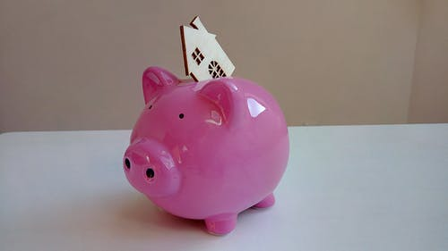 Free stock photo of house, income, piggy bank, pink color