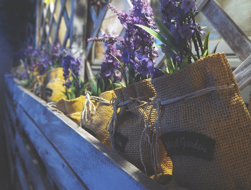 New free stock photo of flowers, summer, garden