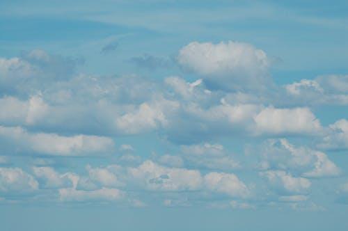 Darmowe zdjęcie z galerii z chmura, cumulus, niebieski