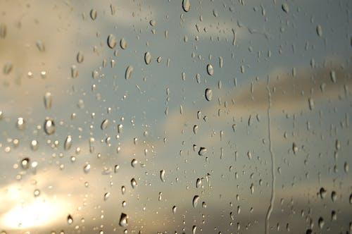 Darmowe zdjęcie z galerii z krople, słońce, woda