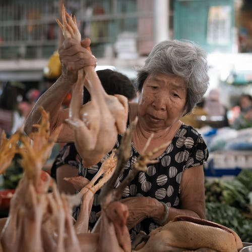 Free stock photo of asian woman, asiatic, chicken, fish market