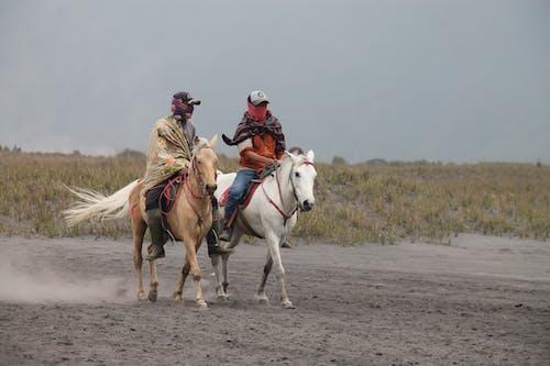 Men on Horses During Daylight