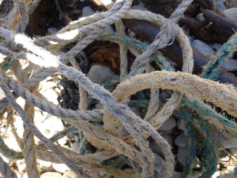 Free stock photo of beach, micro, rope