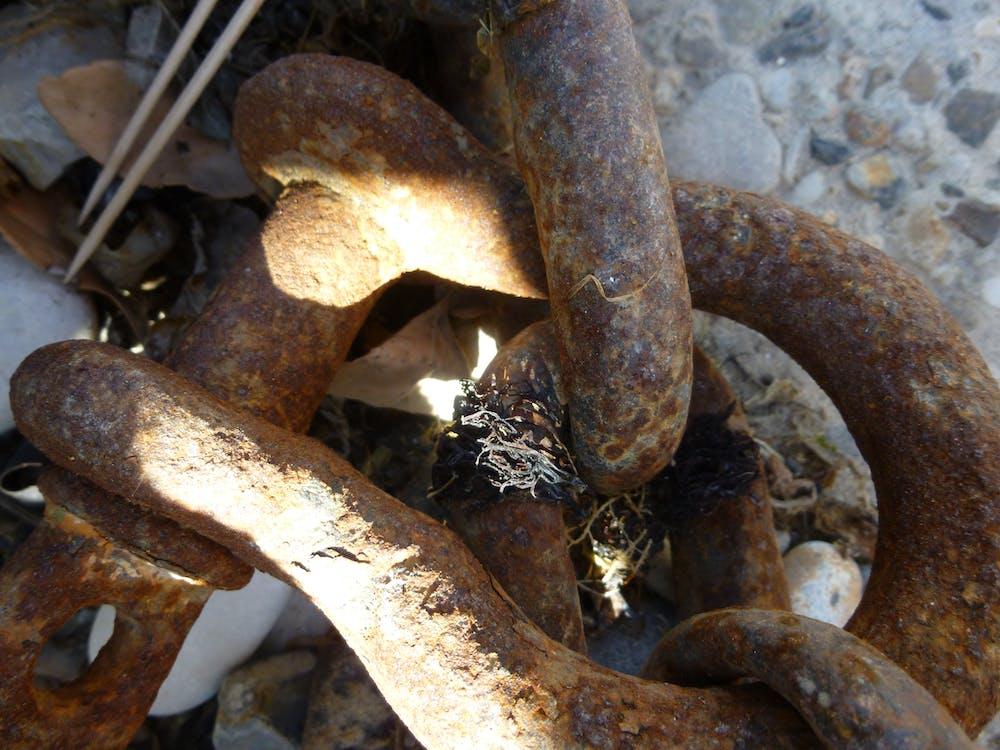 Free stock photo of beach, metal, micro