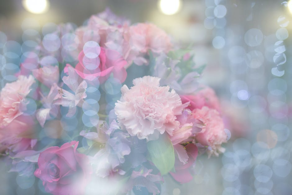 Beautiful flowers blooming in a blur background