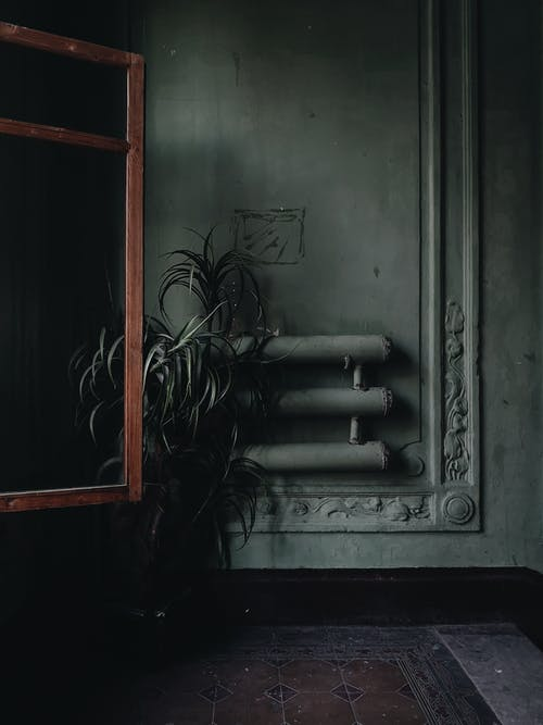 Foto d'estoc gratuïta de cassola, de fusta, detalls, dins
