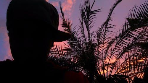 Darmowe zdjęcie z galerii z chłopak, czerwone niebo, natura, piękny