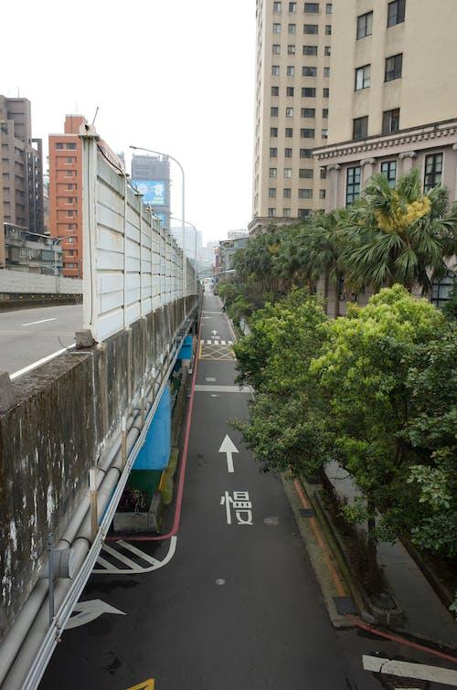 Free stock photo of city, lane, pavement markings