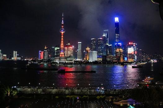 Free stock photo of sea, city, lights, night