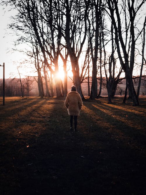 Photo of Person Standing on Grass Field During Golden Hour