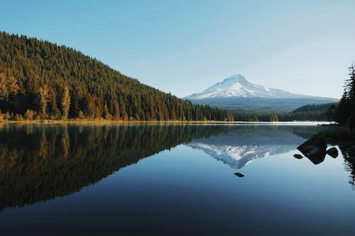Darmowe zdjęcie z galerii z błękitne niebo, cichy, drzewa, jezioro