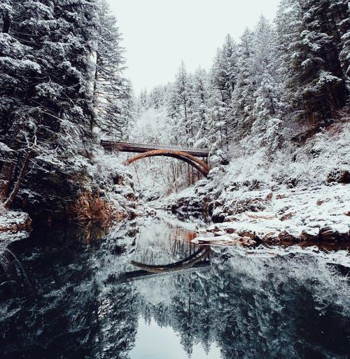Bridge Covered Wth Snow