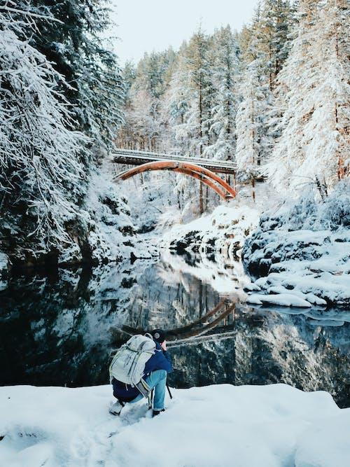Бесплатное стоковое фото с активный отдых, досуг, зима, ледяной