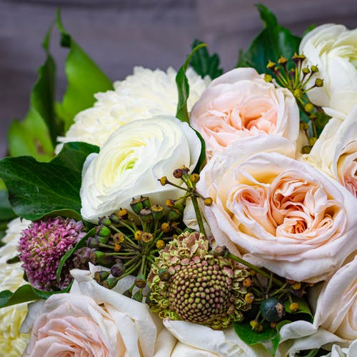 Free stock photo of bouquet of flowers, roses