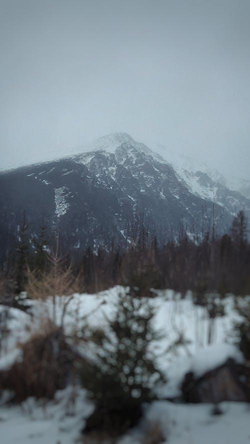Ảnh lưu trữ miễn phí về màn đêm buông xuống, mùa đông, những ngọn núi khổng lồ, phong cảnh