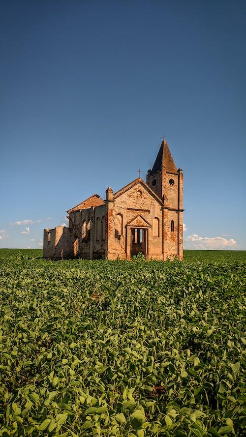 Brown Concrete Church on Green Fields