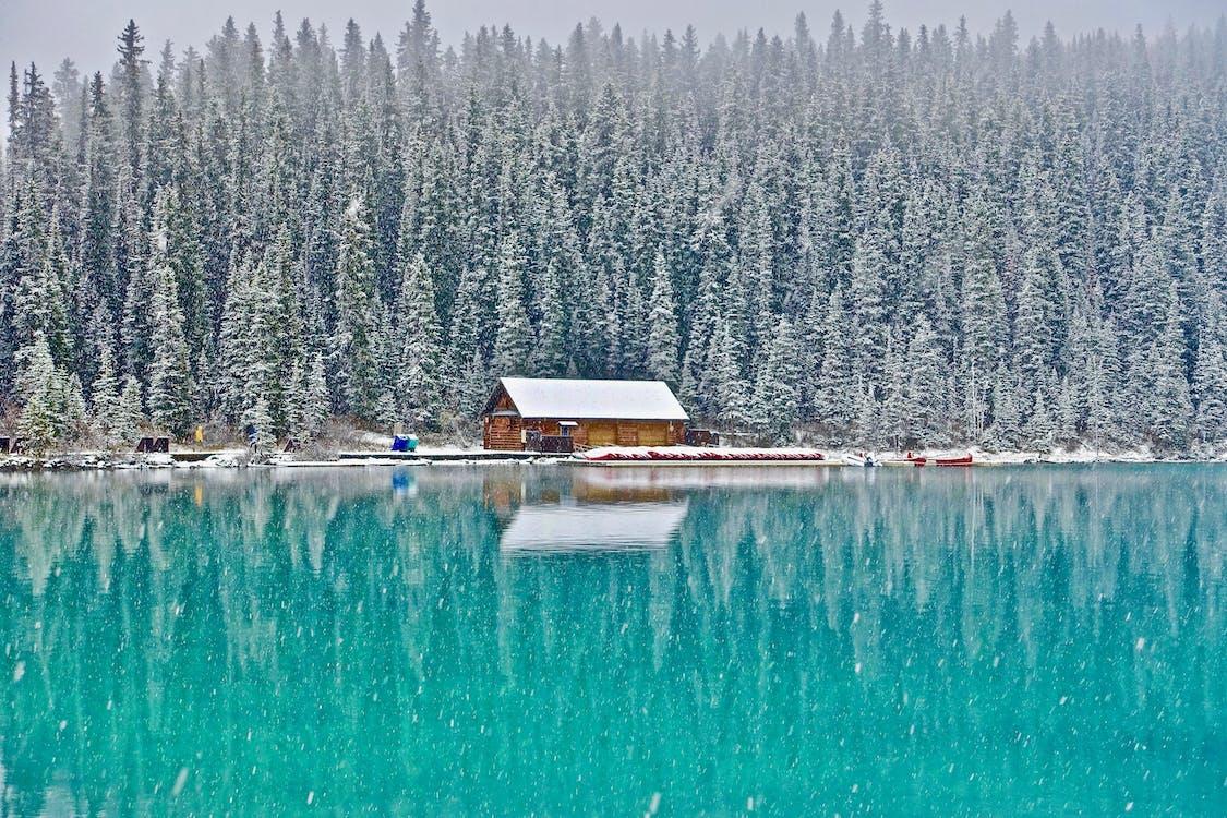 감기, 강, 겨울