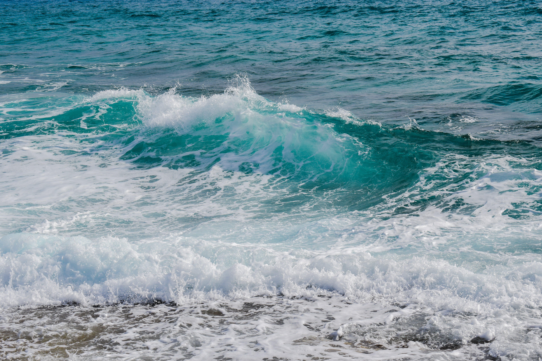 beach, foam, motion