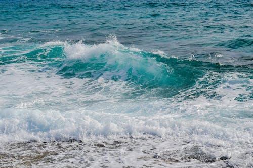 夏天, 水, 泡沫, 海 的 免費圖庫相片