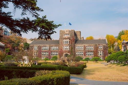 Fotobanka sbezplatnými fotkami na tému # 대학교, # 연세대 학교, #asianuniversity, #korea