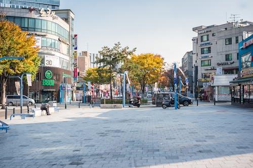 Fotobanka sbezplatnými fotkami na tému Ázia, hongdae, južná kórea, Kórea