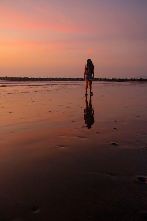 Free stock photo of photography, walk, woman