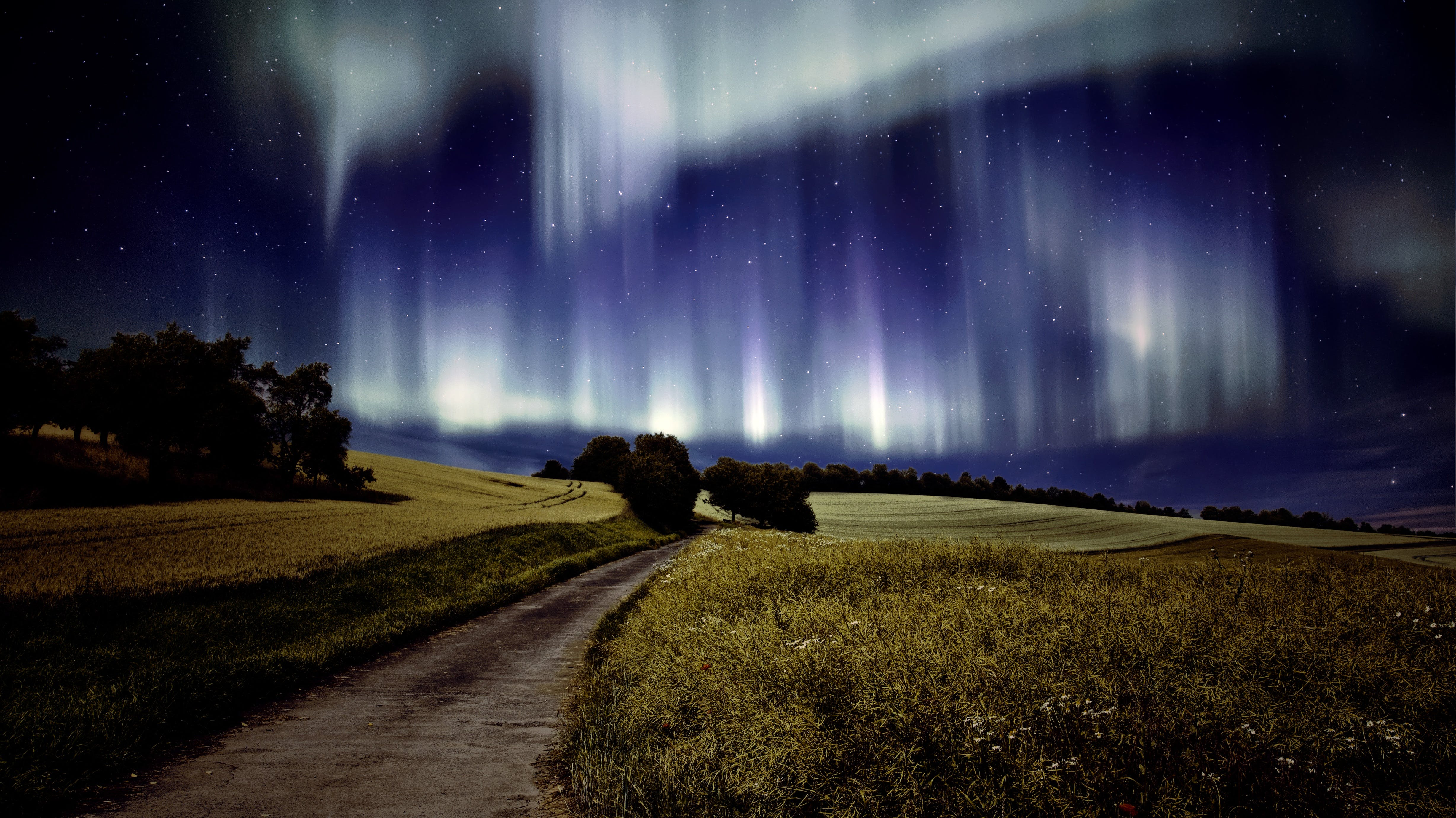 Photography of Northern Lights over Grass Field