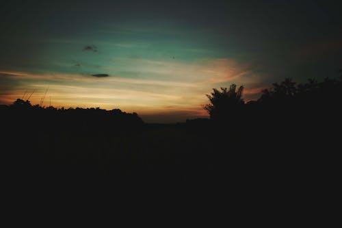 Fotobanka sbezplatnými fotkami na tému noc, zlatá obloha
