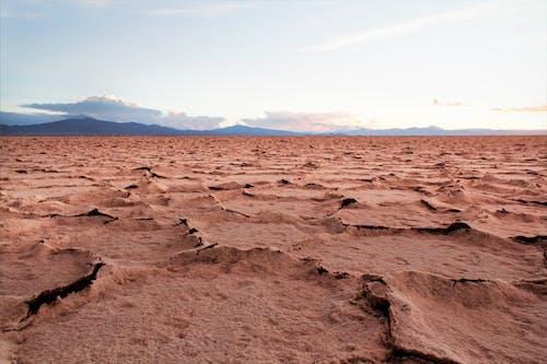 Foto stok gratis Amerika, Argentina, danau, garam