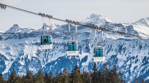 Základová fotografie zdarma na téma alpský, denní světlo, dobrodružství, hory