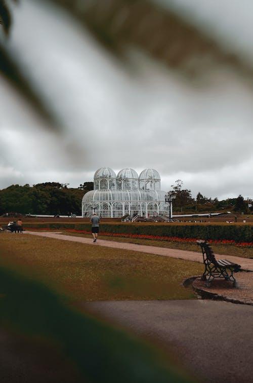 Darmowe zdjęcie z galerii z kurytyba, ogród botaniczny