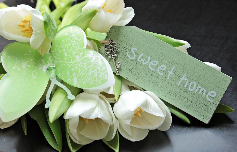 건강, 그리팅 카드, 꽃
