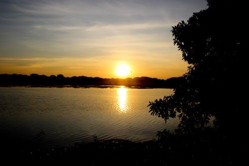 天性, 太陽, 太陽升起, 斯里蘭卡 的 免費圖庫相片