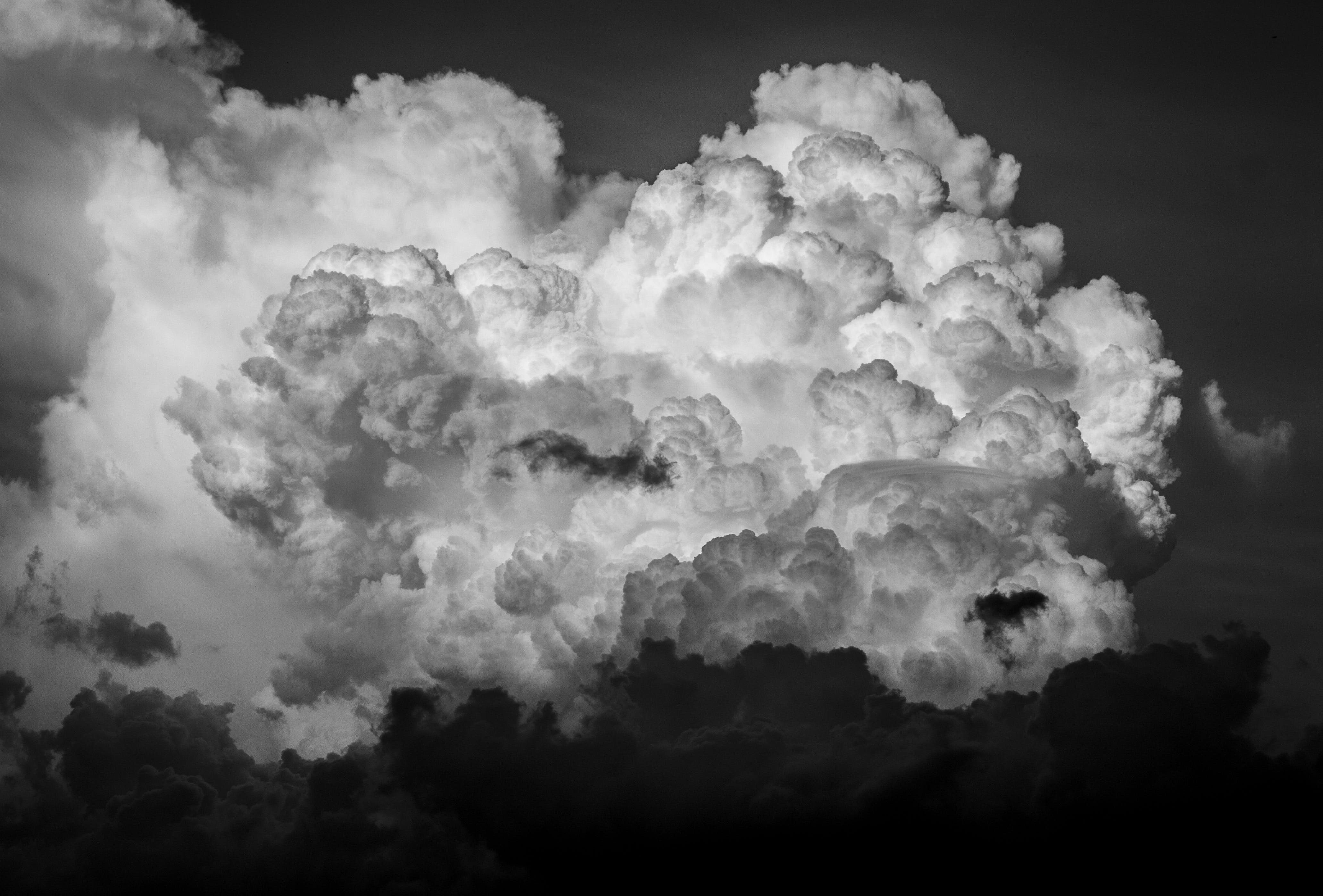 Free stock photo of air, atmosphere, black, black-and-white