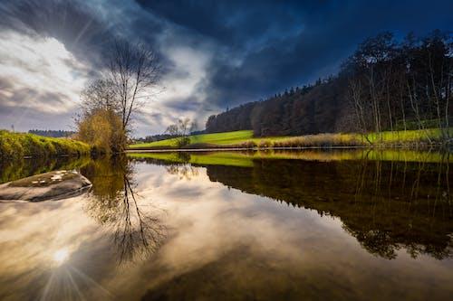 Бесплатное стоковое фото с вода, деревья, живописный, закат