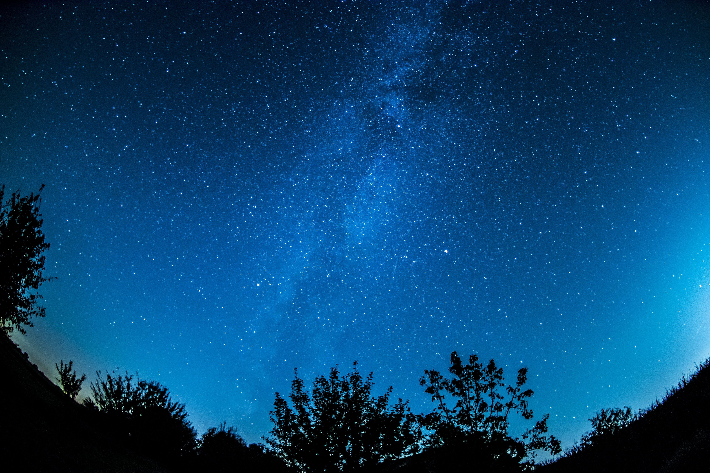 Kostenloses Stock Foto zu abendhimmel, astronomie, bäume, dunkel