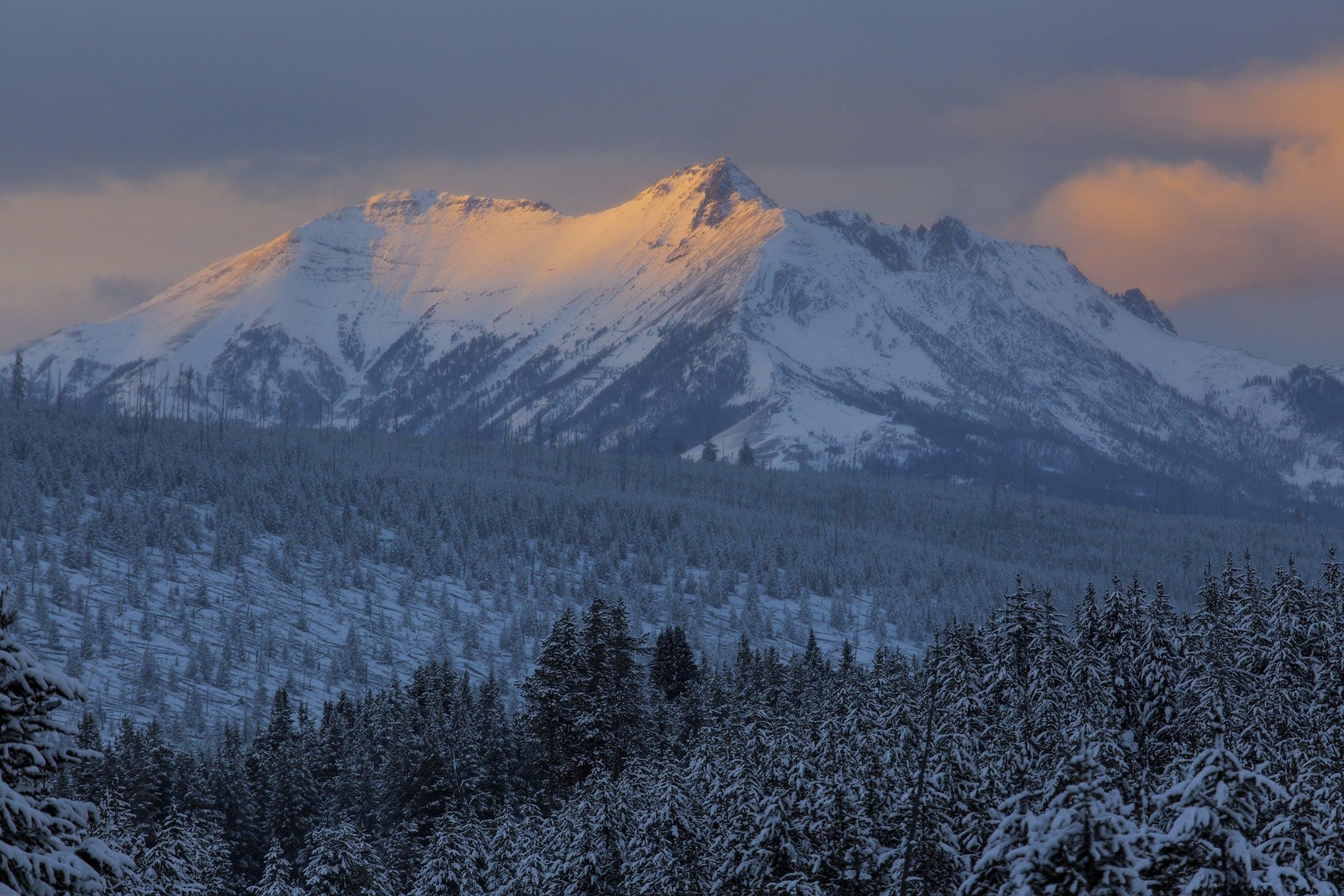 Gratis lagerfoto af aften, alpin, bakke, bjerge