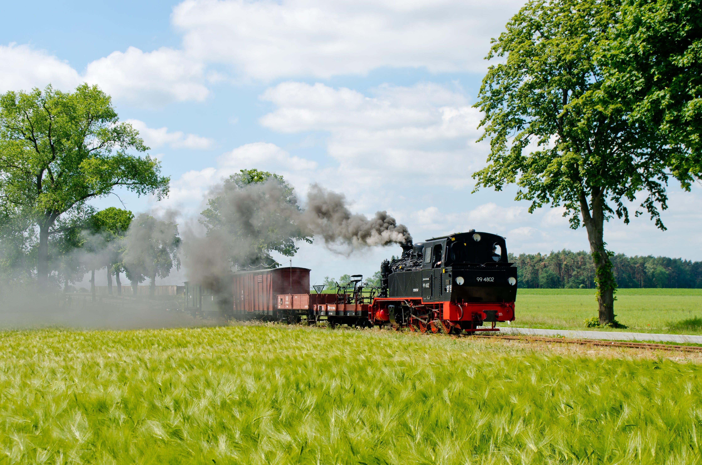 Black Train Near Tree