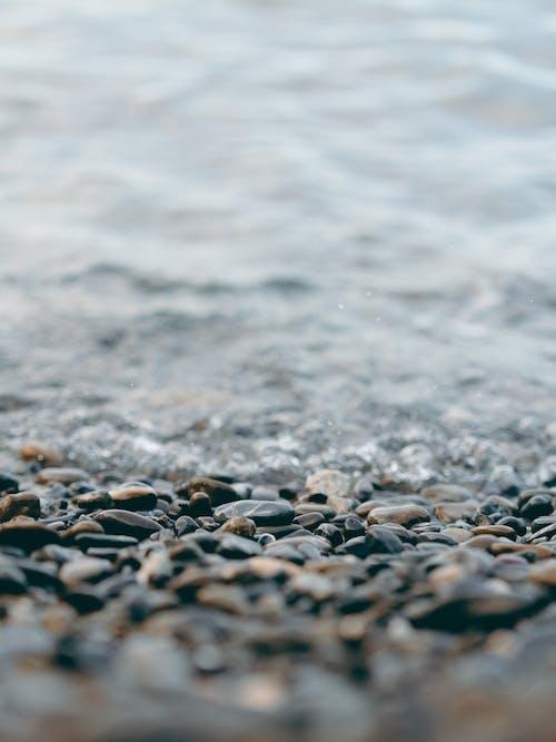 Close-up Photo of Rocks at Beach