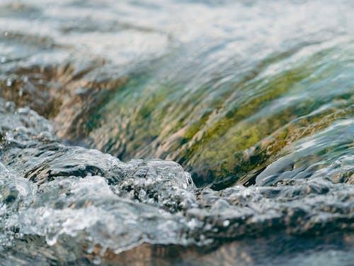 Ilmainen kuvapankkikuva tunnisteilla h2o, keskittyminen, kirkas vesi, lähikuva