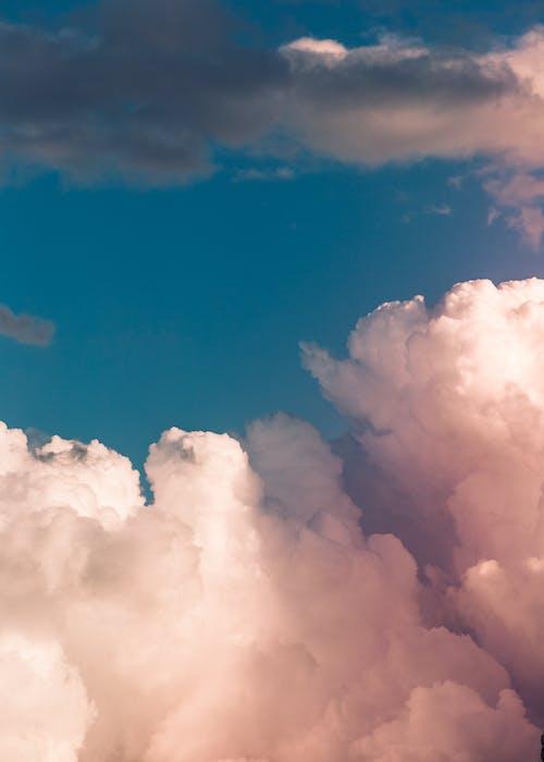 Foto stok gratis alam, angin, awan, awan bengkak